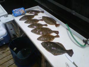 charleston-flounder-fishing-5