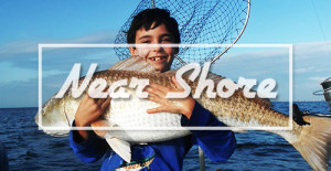 near shore fishing charters