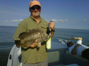 charleston-triple-tail-fish-image13