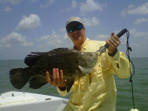 charleston-triple-tail-fish-image15