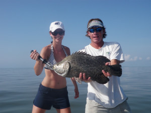 charleston-triple-tail-fish-image3